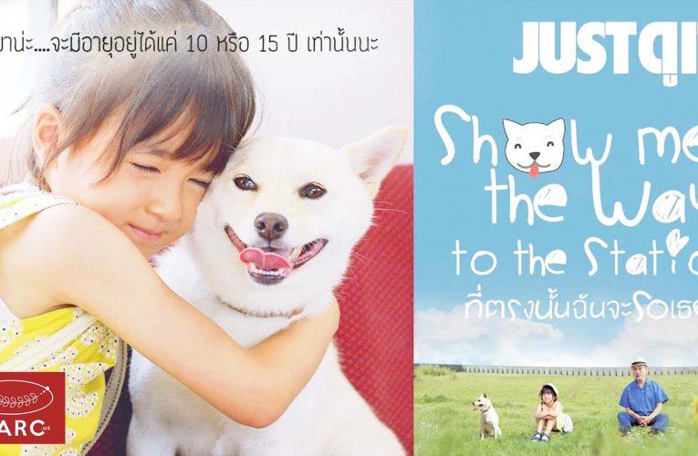 รีวิว Show Me The Way to The Station หนังคนรักหมาที่แฝงปรัชญาไว้ลึกซึ้ง