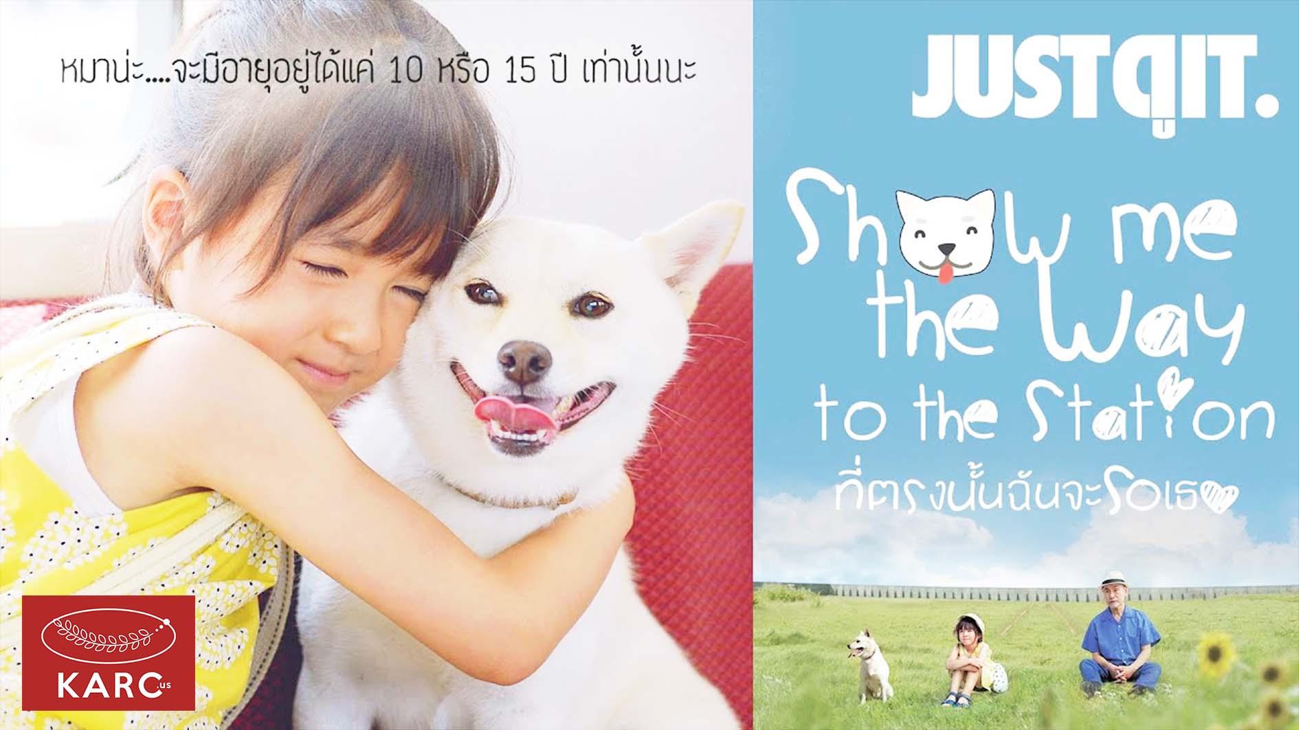 รีวิว Show Me The Way to The Station หนังคนรักหมาที่แฝงปรัชญาไว้ลึกซึ้ง - Karc.us